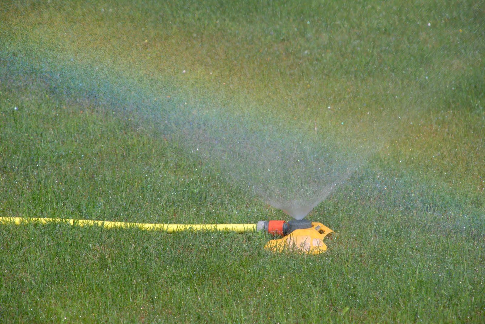sprinkler1