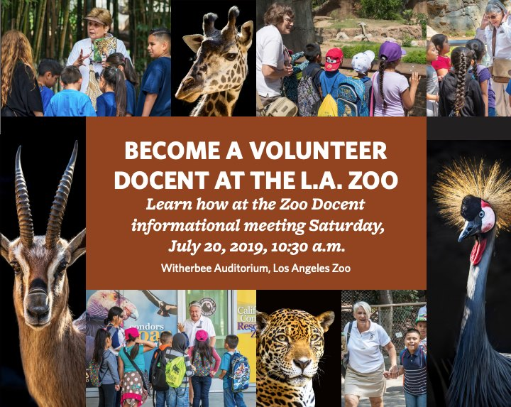 become a zoo volunteer