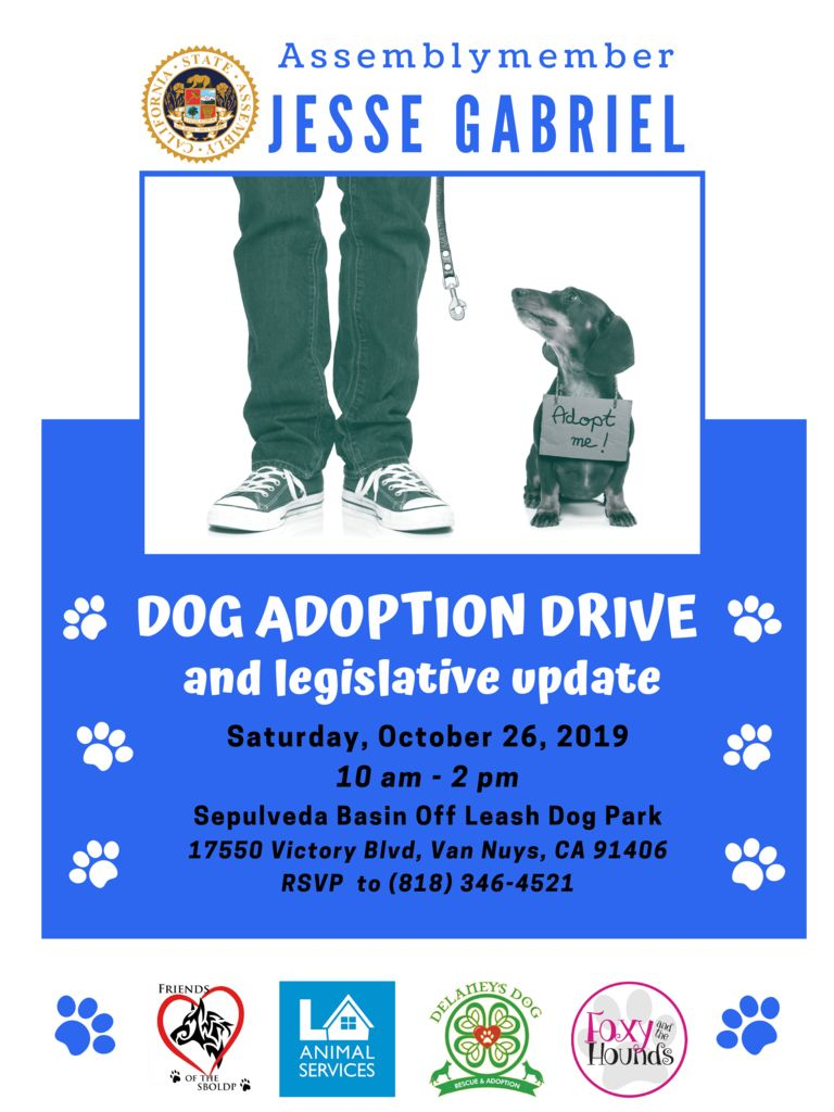thumbnail of Jesse Gabriel Dog Adoption Flyer